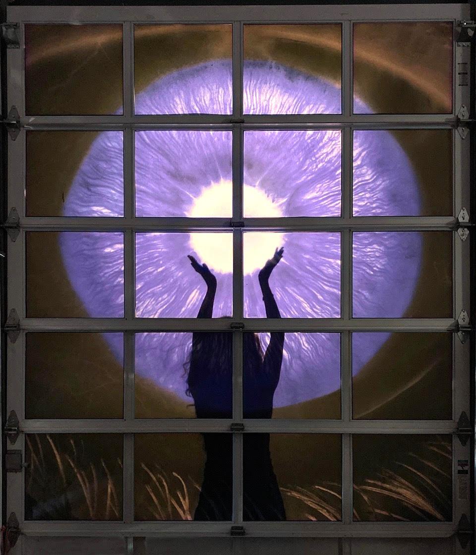 Bryan Whitney IRIS SPACE:LIGHT at The Plaxall Gallery LIC