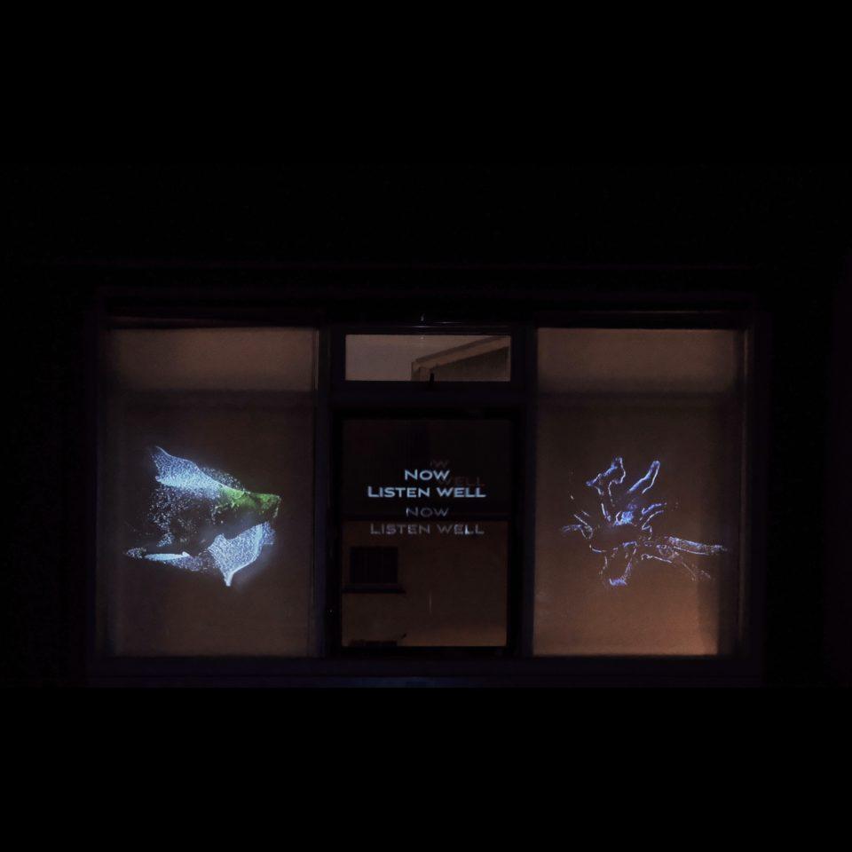 Sarah Song Drifting Consciousness artwork for HoloCenter Light Windows in Iceland