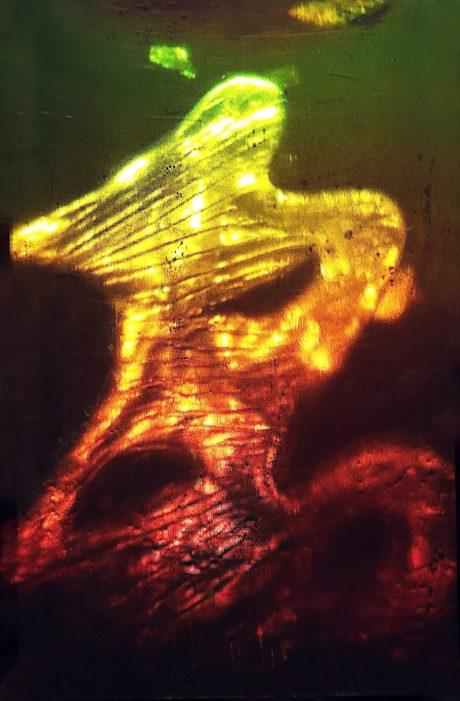 hologram by Eric Leiser