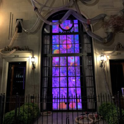 Windowpane Tranquility by Steve Pavlovsky Liquid Light Lab Analog Liquid Light Show at the cell