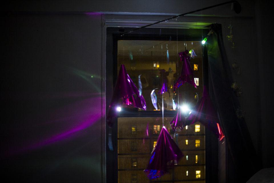 Mollie Serena Floralumin Light Windows installation