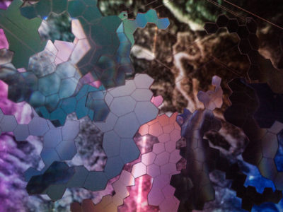 Jess Holz, Borderlands, 2020 | Installation with laser cut Fresnel lenses and video of the artist's skin being examined under the scanning electron microscope | Edge of Light