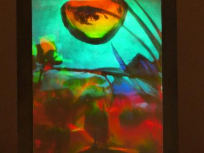 """Sam Moree Gaugin's Eyepiece, 1980 multi-layered transmission hologram, 10 x 8"""" photograph of hologram that show overlaied botanic imagery"""