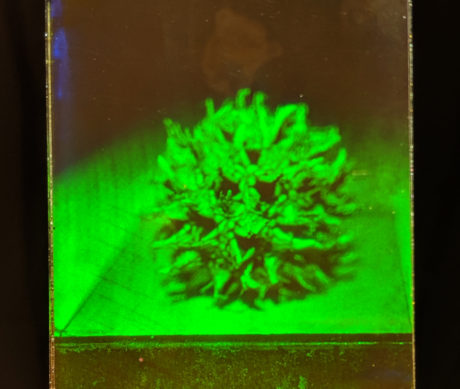 hologram on instant film by Martina Mrongovius